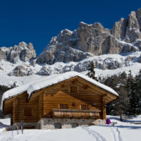 Chalet and trees under the snow in the idyllic landscape of the dolomiti in Trentino South Tyrol
